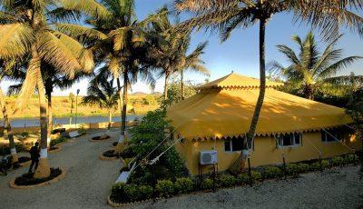 Gir - Lion Safari Camp Resort