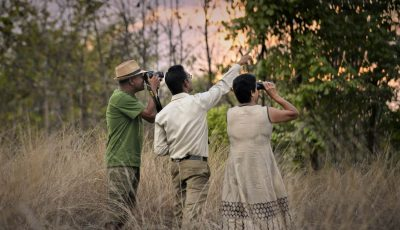 Nature Walk Activities in India