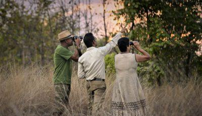 Nature Walk Activities in India