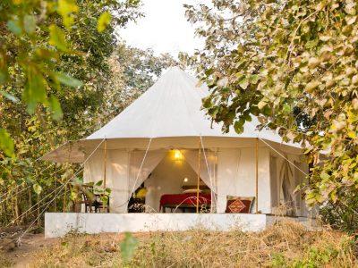 Jamtara Wilderness Camp - Tent Entrance