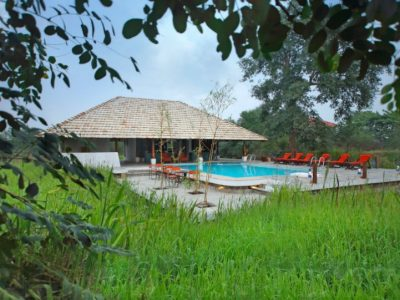 Svasara Jungle Lodge Tadoba Andhari - Pool View