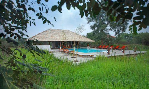 Svasara Jungle Lodge Tadoba Andhari - Pool View