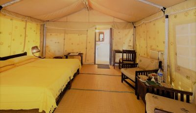 Lion Safari Camp, Sasan Gir